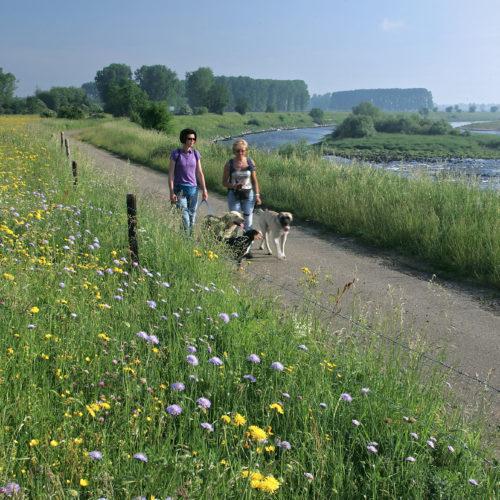Wandelen in Limburg wandelbox streekkaarten