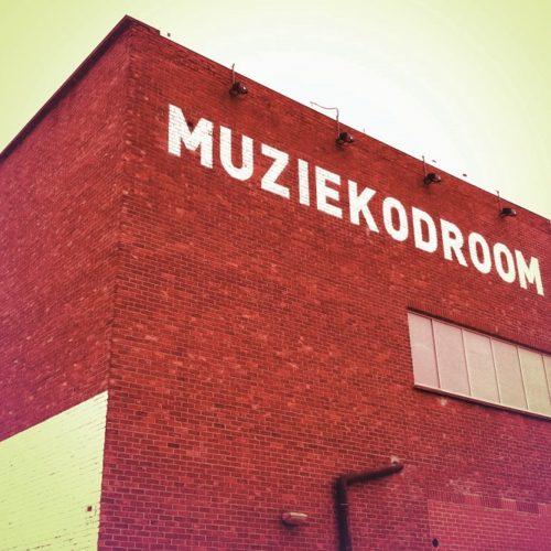 Muziekodroom krijgt subsidies cultuur