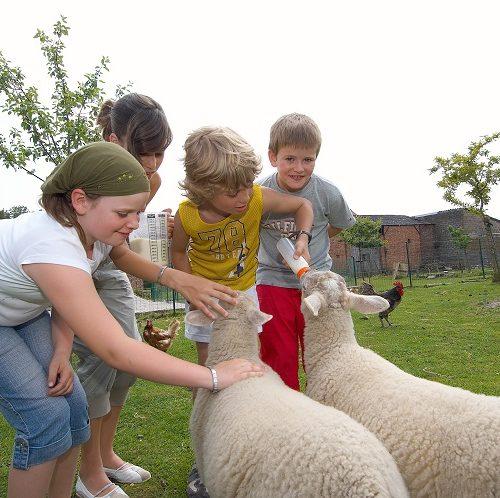 Provincie Limburg toerisme Bed & Breakfast De Heurwinning, Tongeren