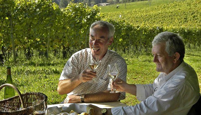 Voerense wijn