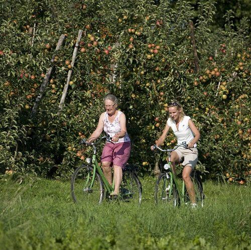 fietsers langs appelgaarden