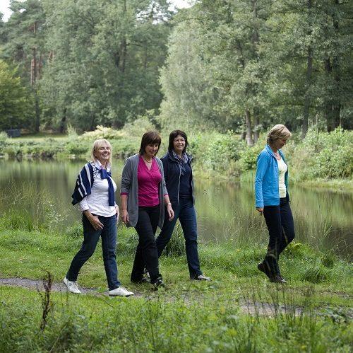 Wandelaars in De Wijers