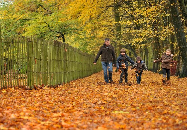 herfst met toerisme limburg
