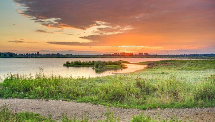 Maasland landschap